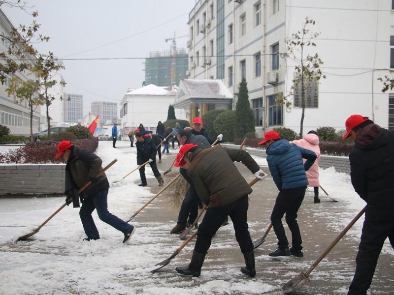 县委党校开展除雪破冰志愿活动